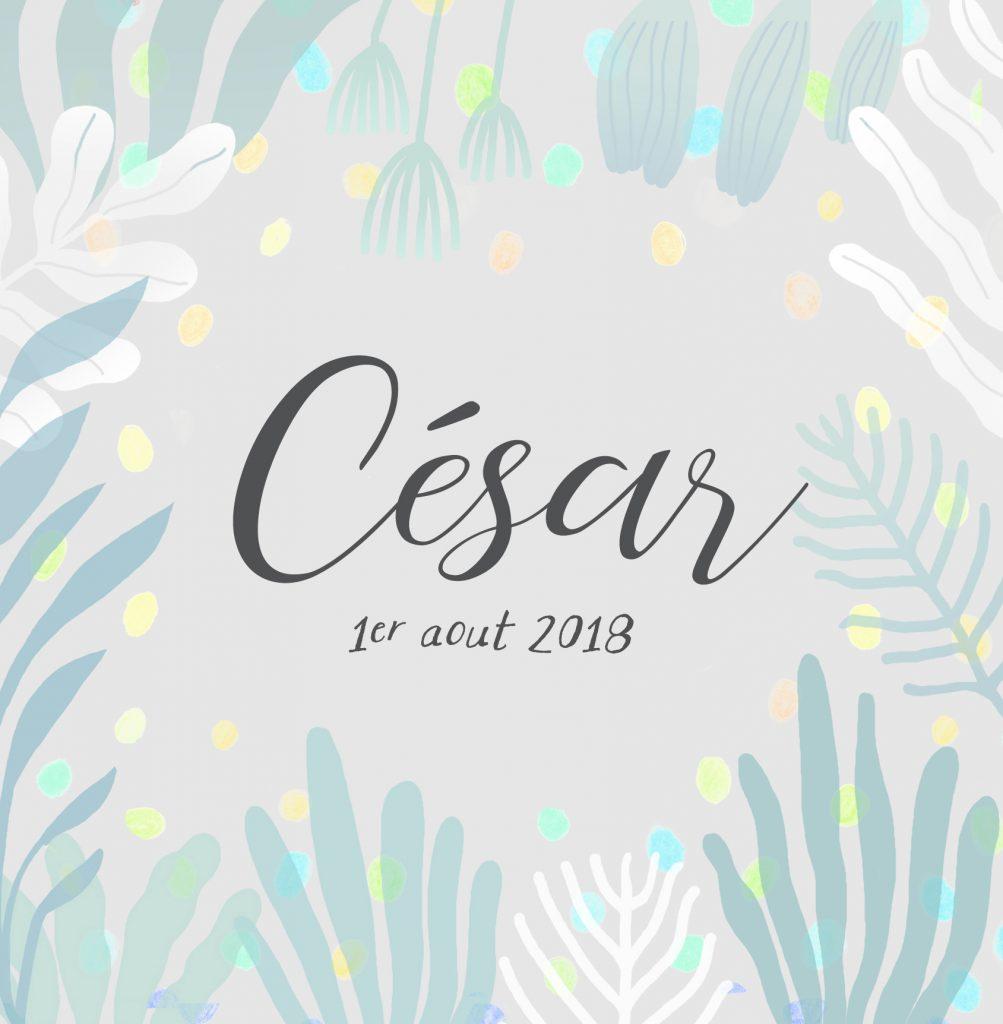 Faire-part de naissance César