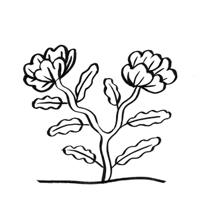vignette coloriage nature
