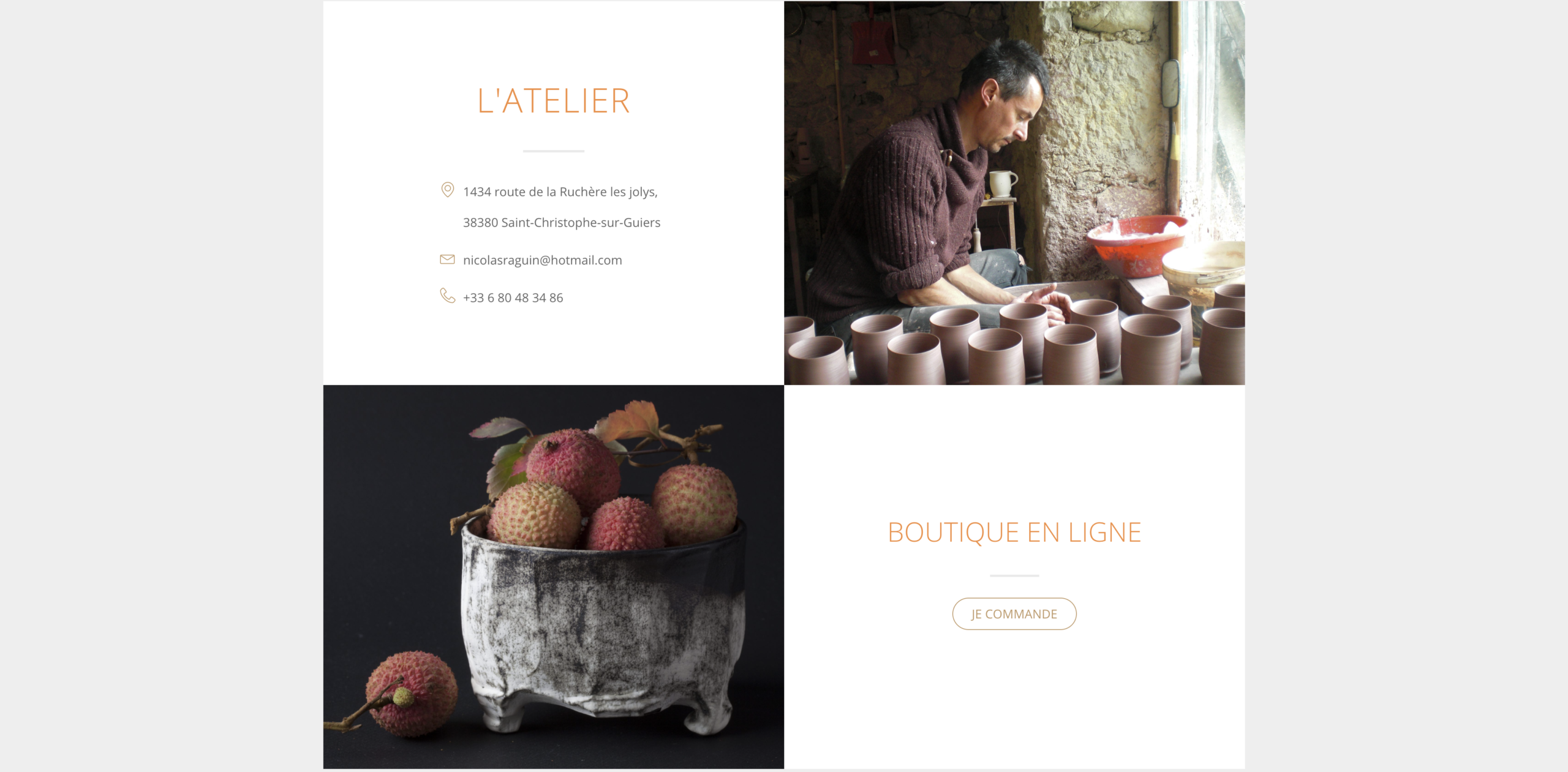 website nicolasraguin page contact